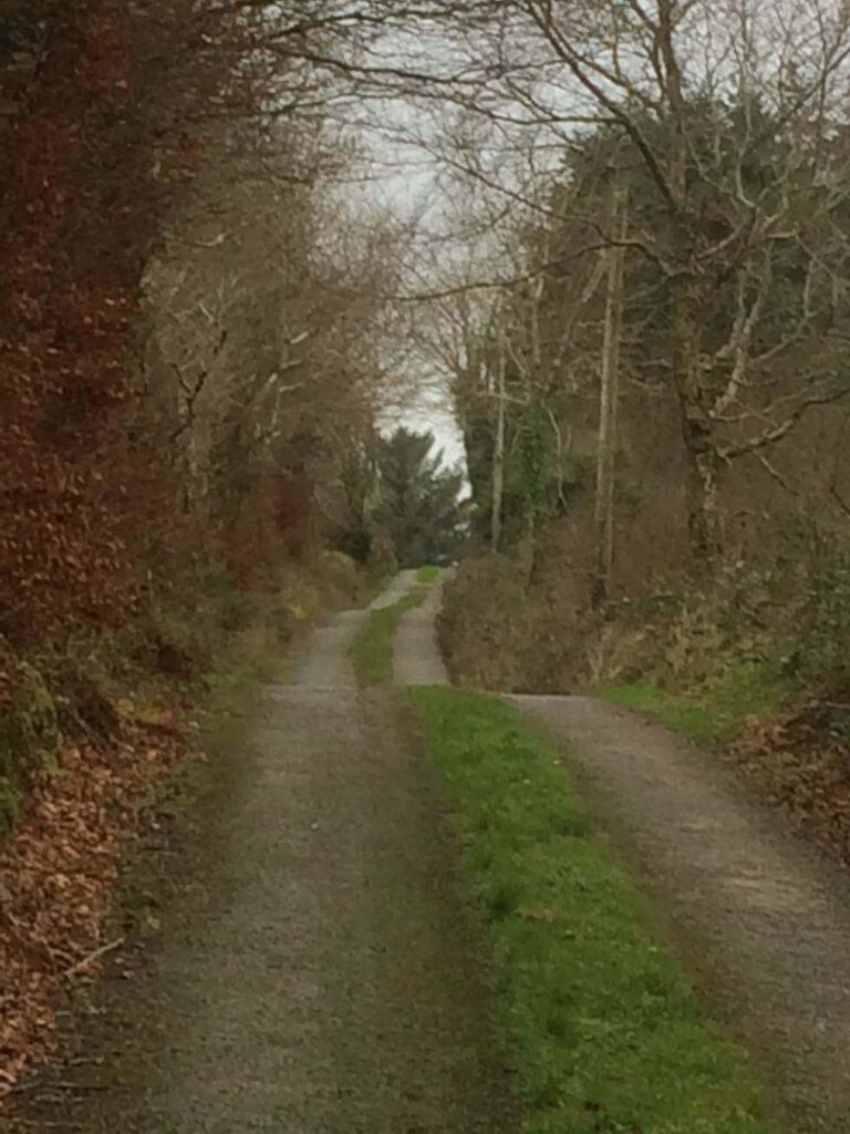 アイルランド道