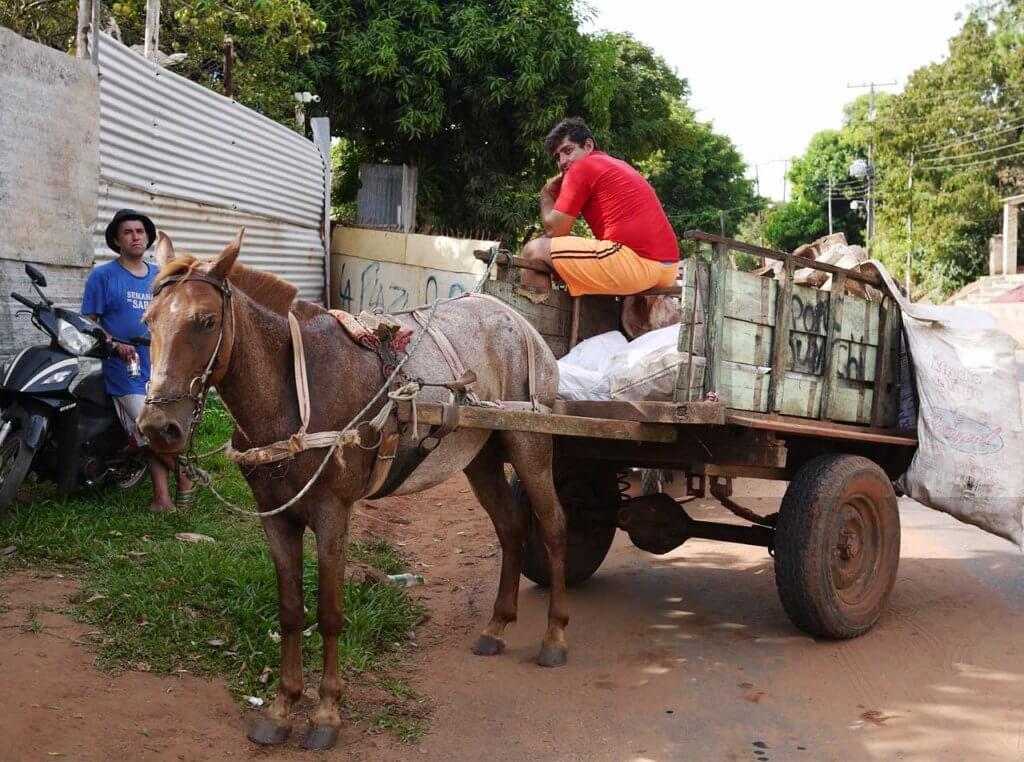 馬車(ゴミの収集中)の写真