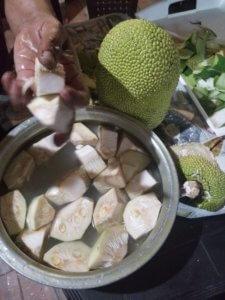 未熟果のジャックフルーツを圧力鍋で煮ると肉のような食感と旨味に。